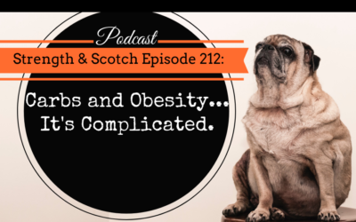 SS 212 – Carbs and Obesity… It's Complicated