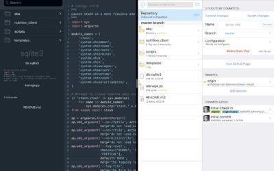 Django Development on an iPad Pro